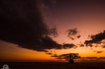Tramonto ad Amboseli