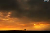 Luce nel Mara