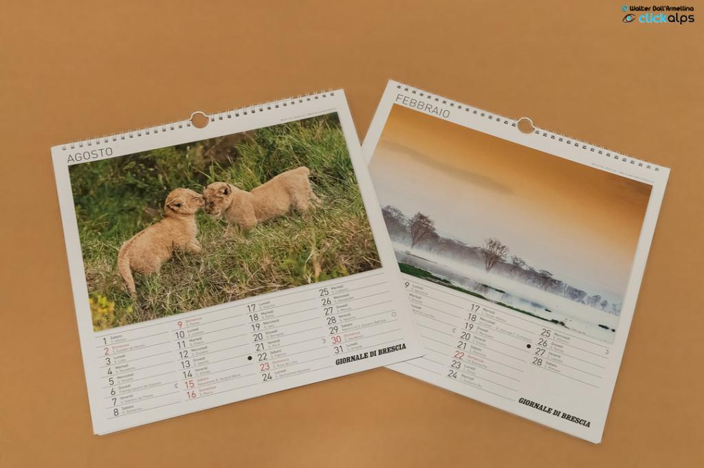 Calendari GdB 2014