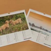 Giornale di Brescia – Calendario 2015
