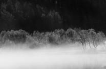 Ombre e Luci sul lago